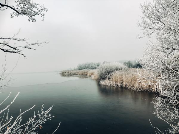 Silke Wedler Fotografie_moor